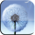 Galaxy S3 Ripple Dandelion LWP icon