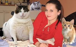 Screenshot of Cat Painter
