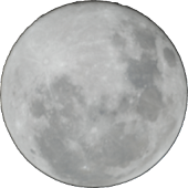 Lunar Colony