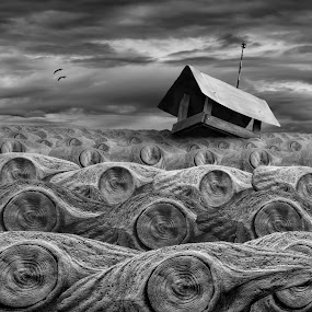 Stormy by Dariusz Klimczak - Digital Art Places ( water, montage, monochrome, wood, mood, sea, surreal, storm, birds, kwadrart, feeder, stormy, weather )