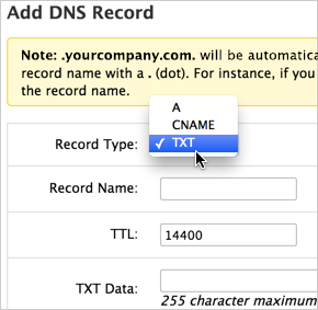 Record Type drop-down TXT option