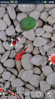 Screenshot of 3D Koi Pond Reality Live Wallp