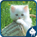 Los gatos Jigsaw Puzzle icon