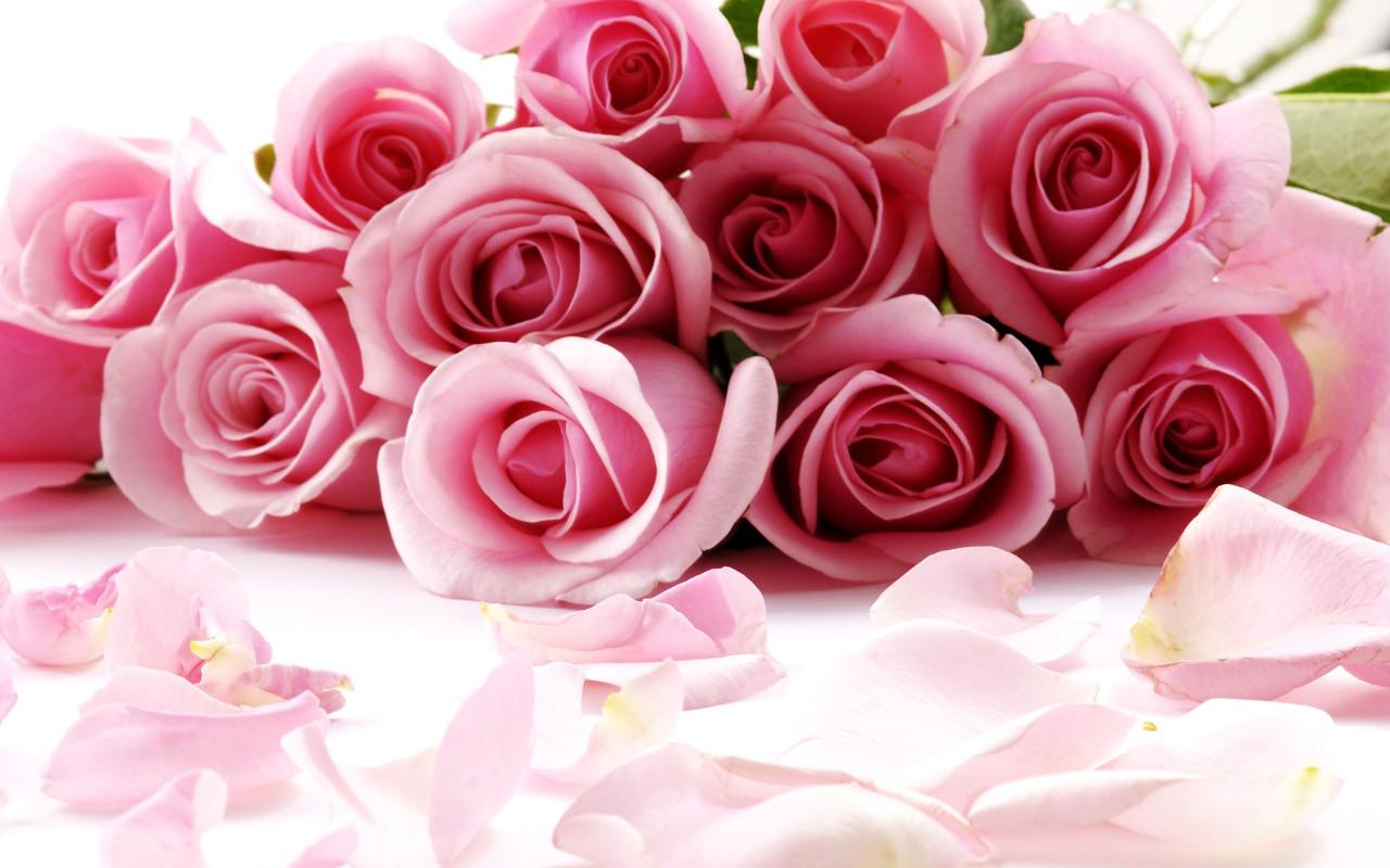 Roses Jigsaw Puzzles- screenshot