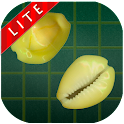 AshtaChemma Lite icon