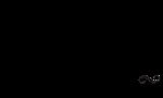 Logo for Nate's Garden Grill