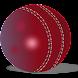 クリケットの試合速報ウィジェット