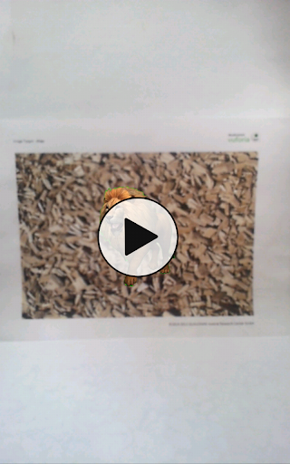 Transparent Video AR 1