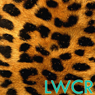 estampado de leopardo lwp icon