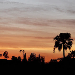 Halftime by Paul Stanley - Instagram & Mobile Instagram ( sunset, hollywood )