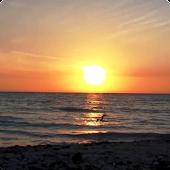 Sunset Ocean Live Wallpaper HD
