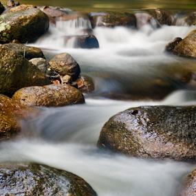 200710260751 by Steven De Siow - Landscapes Waterscapes ( nature, rocky river, waterscape, cascade, landscape )