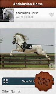 Horses PRO- screenshot thumbnail
