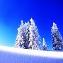 3D Winter snow logo