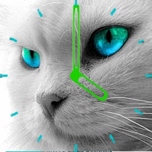 Cat Clock OrologioGatto Widget