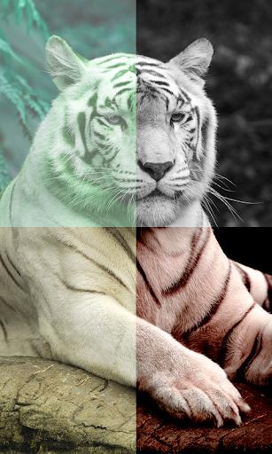 Super Image Editor