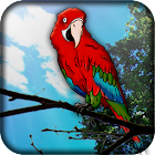Parrot Live Wallpaper icon