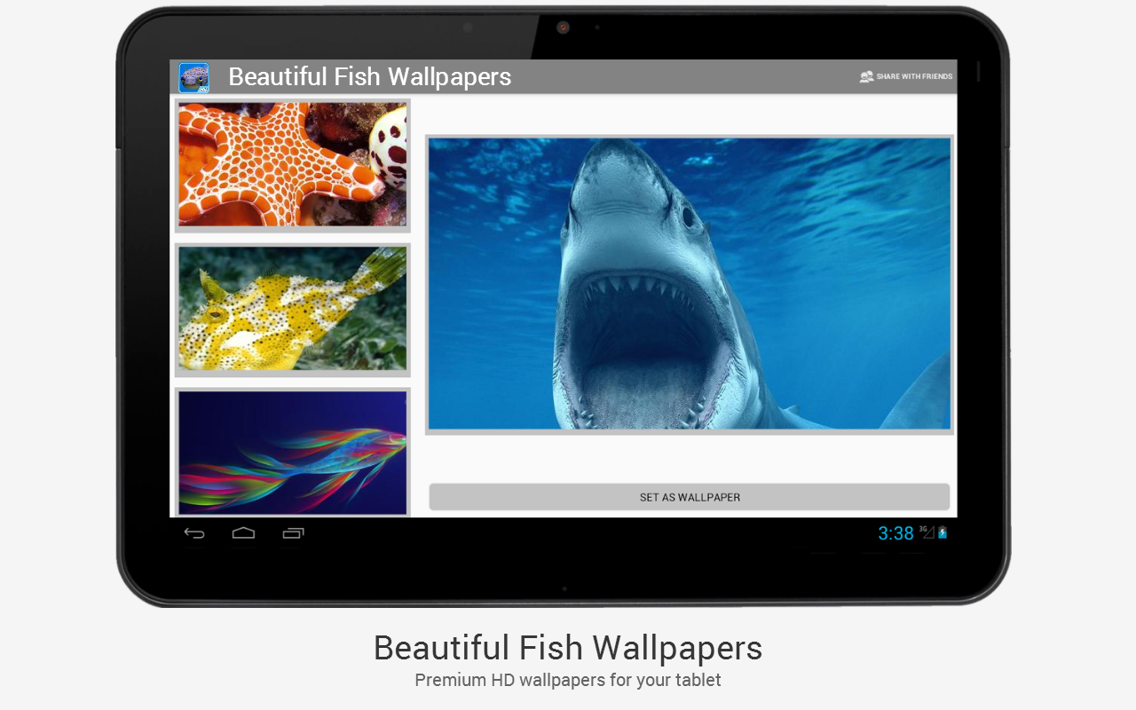 Beautiful Fish HD Wallpapers - screenshot