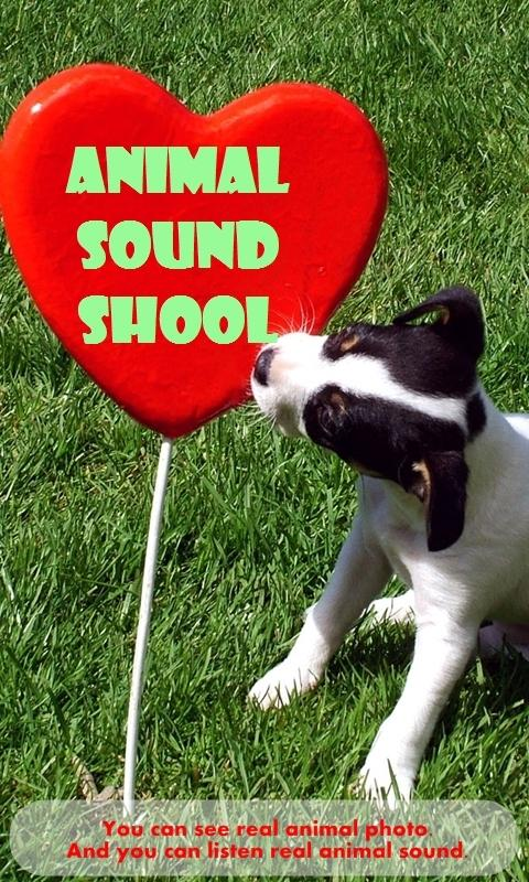 Baby Sound School (animals) - screenshot
