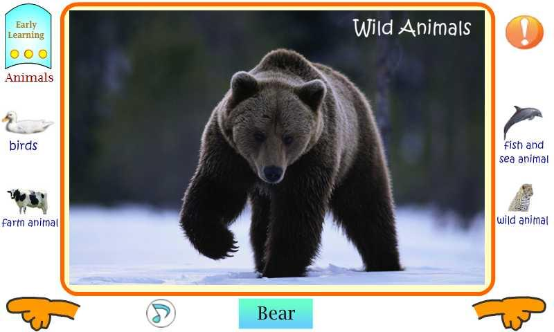 First English Animals (Free) - screenshot