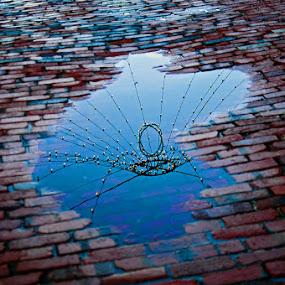 Light of the Earth by Jon Hurd - City,  Street & Park  Street Scenes ( water, mirror, reflection, night, puddle, light )