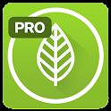 Garden Plate Pro- diet recipes icon