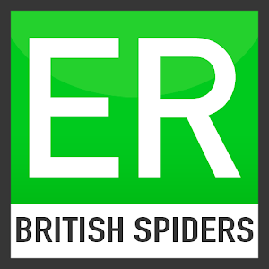 Easy Recorder British Spiders