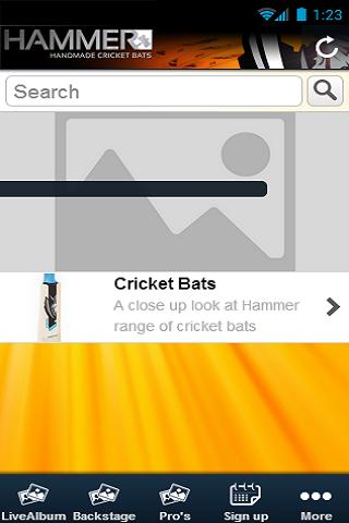 Hammercricket