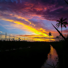Sunset by Budi Wahono - Instagram & Mobile Android (  )