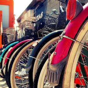 Colorful Bicycles by Diadjeng Laraswati H - Sports & Fitness Cycling ( tidung, , land, device, transportation )