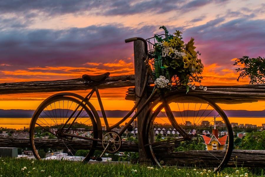 Bicyclette au couché de soleil by Bertrand Lavoie - Transportation Bicycles ( sunset, biciclette, bicycle )