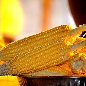 by Dr .Ghanshyam Patel - Food & Drink Plated Food (  )