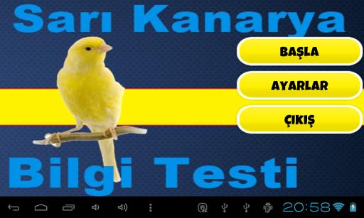Sarı Kanarya Bilgi Testi