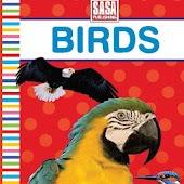 Preschool Board Book Birds