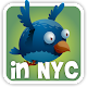 Flappy Veery in New York 1.3