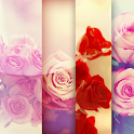 Wallpapers of love HD icon