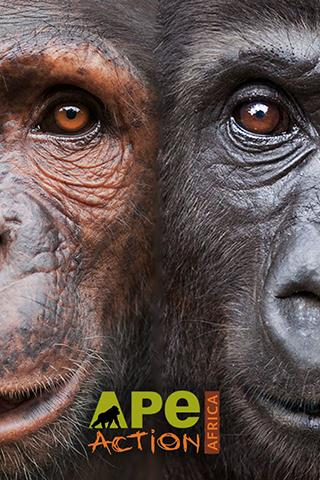 Ape Action Africa- screenshot