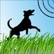 Dog Whistle Pro Trainer