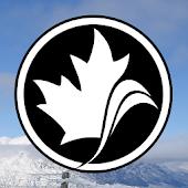 Alpine Ski Coach