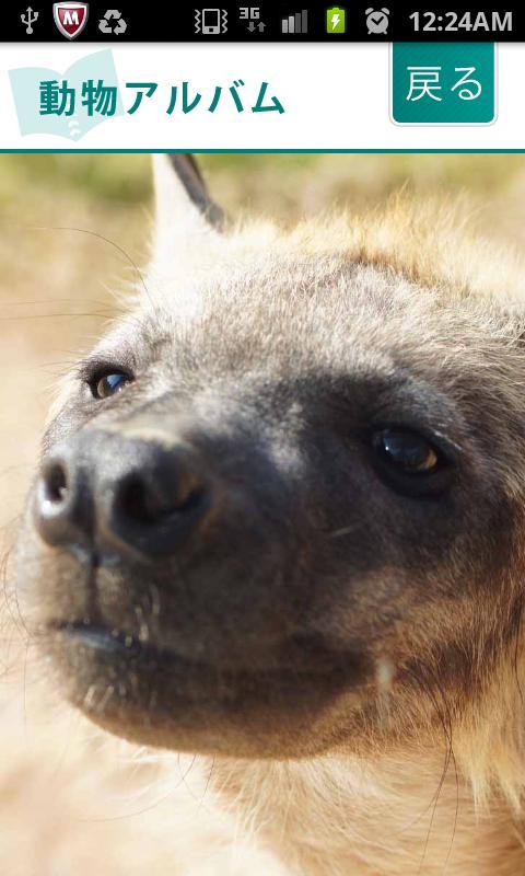 i 動物園 のいち動物公園版- screenshot