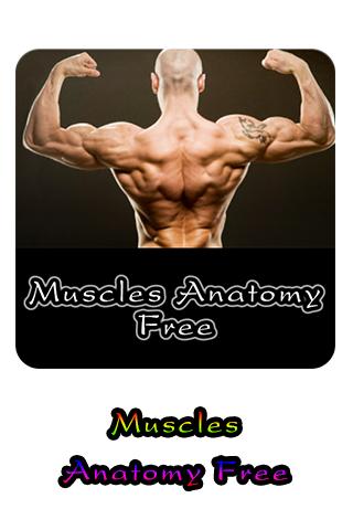 Muscles Anatomy Free