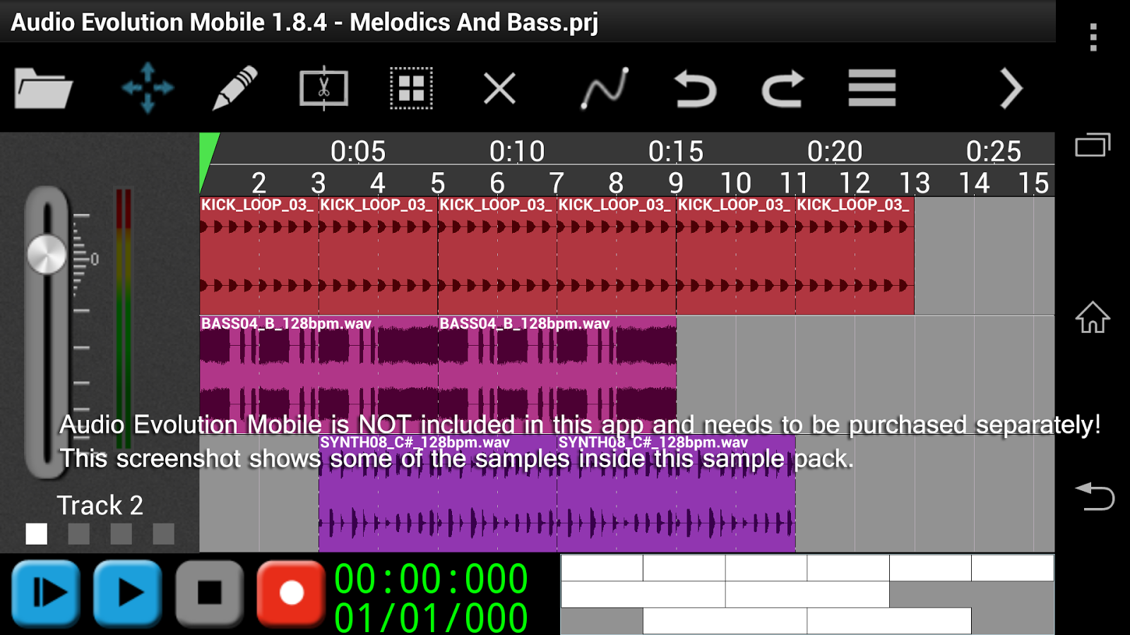 House Melodics & Bass for AEM- screenshot