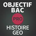 OBJECTIF BAC PRO HIST/GEO 2015