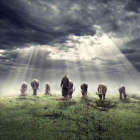 Heaven of Light by Ipoenk Graphic - Digital Art People
