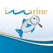 iMarine Search