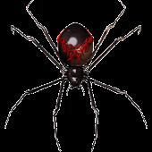 Spider Widget