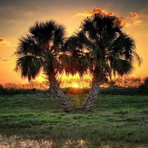 Peace Creek sunset1.jpg