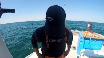 Bluefin Beatdown
