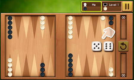 Backgammon King 14.0 screenshot 332322