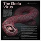 Ebola (Credits:WHO) icon